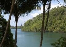 Parque Nacional  Alejandro de Humboldt: el hábitat natural más importante de todo el Caribe insular