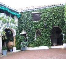 La UNESCO declara los Patios de Córdoba (España) Patrimonio Inmaterial de la Humanidad