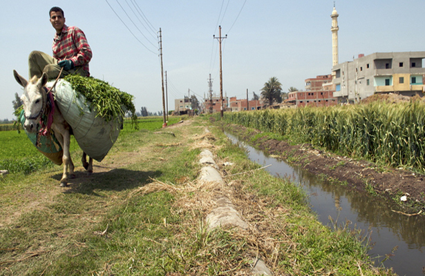 Un río del Antiguo Egipto podría ser revivido para la agricultura