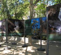 """El MAGRAMA organiza la exposición itinerante """"El Parque Nacional de la Sierra Guadarrama en la Red de Parques Nacionales"""""""