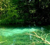 La naturaleza, más presente que nunca en FITUR 2014