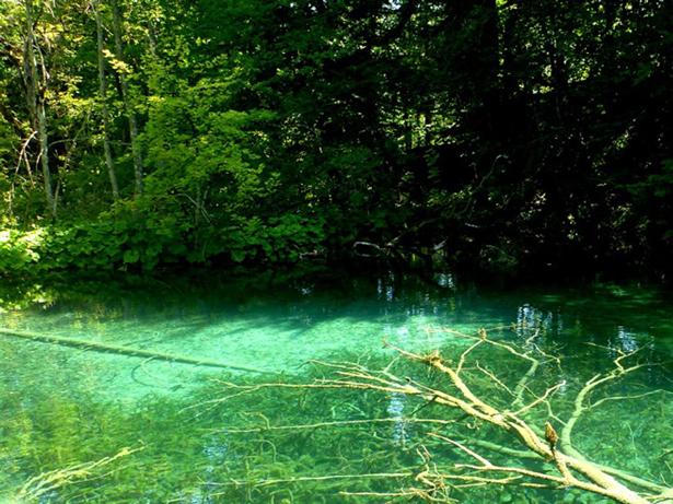 Parque Natural de la Amistad en Panamá