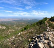 El MAGRAMA destina 626.855 euros para proyectos de investigación en la Red de Parques Nacionales