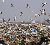 La Comisión Europea adopta propuestas para potenciar el reciclado en los Estados miembros