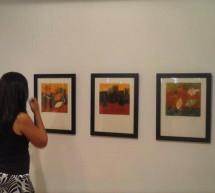 """Adriana Méndez presenta en Madrid la exposición """"Planos y plantas de color"""""""