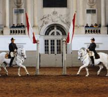 Viena celebra el 450 aniversario de la Escuela Española de Equitación