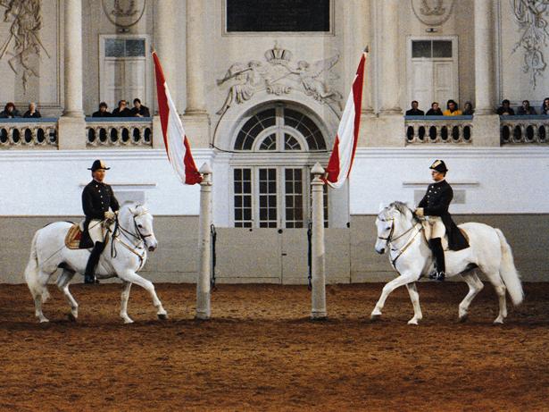 Escuela Española de Equitación. Foto: © WienTourismus - Spanische Hofreitschule - Herbert Graf