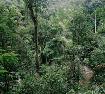 Cambio Climático en Paraguay: enfrentar juntos el riesgo en nuevos escenarios productivos