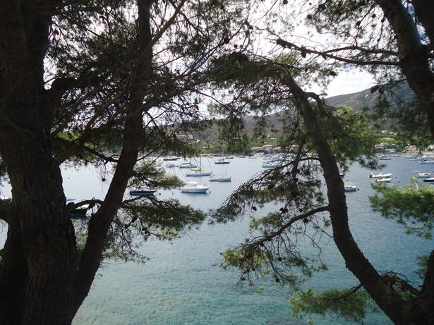 Las costas de las islas de Ibiza y Formentera se limpiaran para evitar catástrofes medioambientales