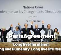 Martillazo verde en la COP21 de París