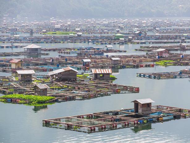 El agua, fuente de empleo y crecimiento económico, según nuevo informe de las Naciones Unidas