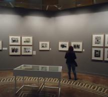 El Instituto Cervantes abre la mayor muestra sobre el fotógrafo José Suárez