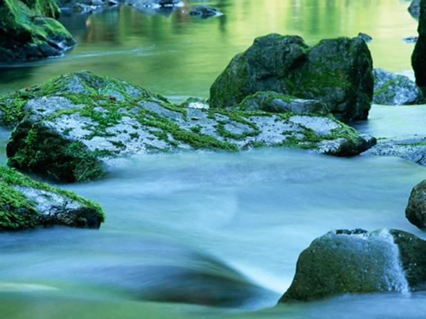 La acuicultura española, aliada en la protección y conservación de la biodiversidad en la Red Natura 2000