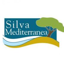 España presidirá los próximos dos años el Comité de Silva Mediterránea