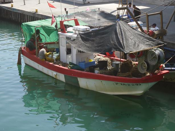 La Comisión Europea alcanza un compromiso de diez años para salvar las poblaciones de peces del Mediterráneo