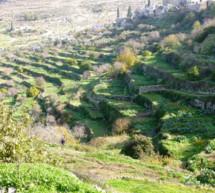 La UNESCO nombra un nuevo sitio de Palestina en la Lista del Patrimonio Mundial en Peligro