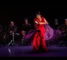Suma Flamenca se convierte en el Festival de Flamenco más importante del mundo