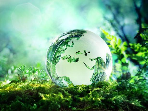 Los Estados Miembros de la UNESCO adoptan la Declaración de Principios Éticos en relación con el Cambio Climático